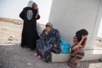 Вдовы боевиков ИГ с детьми