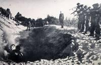 Под Новгородом найдены останки тысяч советских мирных граждан, убитых нацистами