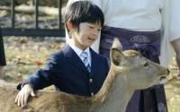 Задержан мужчина, планировавший покушение на японского принца Хисахито