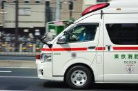 В Японии машина врезалась в колонну детсадовцев: погибли двое детей