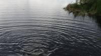 Под Иркутском росгвардейцы спасли мальчика, тонувшего в зоне паводка