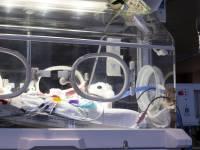 В Великобритании спасают ребенка, беременная мать которого погибла от ножевого ранения