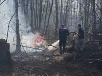 Под Оренбургом из-за природного пожара эвакуировали детский лагерь