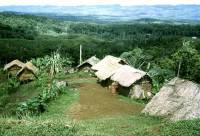 В Океании жестоко убиты 15 аборигенов