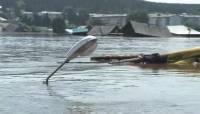 В Амурской области около тысячи человек эвакуировали из-за наводнения