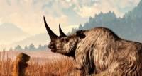 В Башкирии найдены кости древнего шерстистого носорога