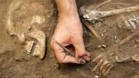 В Хакасии найдены останки женщин-воинов раннего железного века