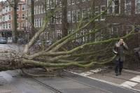 В Европе растет число жертв шторма