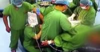 В Италии пересадили оба легких 18-летнему пациенту с COVID-19