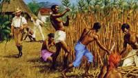 Афроамериканский миллиардер требует $14 трлн за «200 лет рабства»