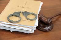 На депутата Галямину завели уголовное дело