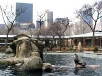 Зоопарк Нью-Йорка