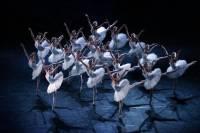 В Большом театре из-за COVID-19 у балерины на карантин отправили нескольких артистов