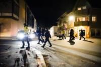 Норвежская полиция сообщила подробности инцидента в Конгсберге