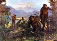Ученые назвали главную причину эволюции человека